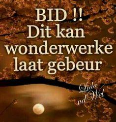 Bid Wisdom, Beef, Afrikaans, Words, Desserts, Meat, Tailgate Desserts, Deserts, Dessert