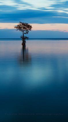 Silence Of Solitude ............ ❤️❤️❤️❤️ ..... beautiful #nature #landscape…