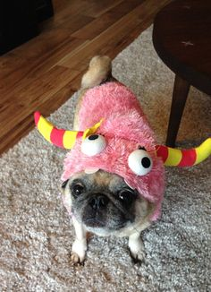 My favorite costumed pug is my own little Monday Monster. Pugs In Costume, Costumes, Animal Dress Up, Pug Love, Dog Life, French Bulldog, Hug, Creatures, Dog Things