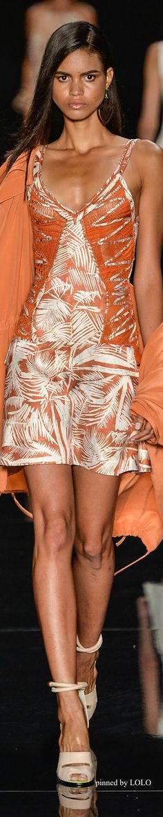 Animale S/S 2015 | The House of Beccaria~