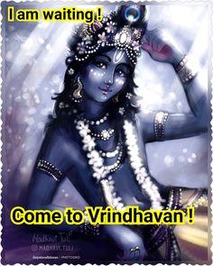 Krishna Lila, Baby Krishna, Radha Krishna Quotes, Krishna Radha, Spiritual Love, Spiritual Thoughts, Namaste Definition, Srila Prabhupada, Gita Quotes