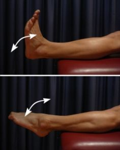 Ankle Flexibility Exercises - Foot and Ankle Up and Down