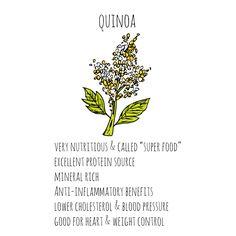 health-benefits-quinoa-sq