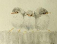 Birds Original Watercolor Painting