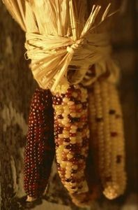Natural Decor With Indian Corn thumbnail