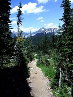 Revelstoke Mountain path
