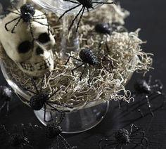 Halloween day idea - cute picture