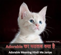 26 Best Meaning in Hindi images in 2019 | Meant to be, English words