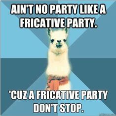 Ain't no party like a fricative party, 'cuz a fricative party don't stop. linguistricks.