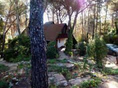 Casa de Cuento, se encuentra situada en San Martín de Valdeiglesias en un pinar con un paisaje y vistas impresionantes, cercana al pantano de S...