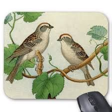 2 birds on a branch - Google Search