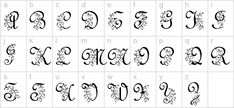 Lily Of The Valley Font