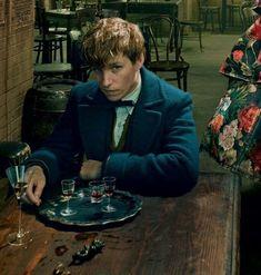 Mundo Harry Potter, Harry Potter Fandom, Harry Potter World, Hogwarts, Slytherin, Newt Scamander Aesthetic, Eddie Redmayne Fantastic Beasts, John David, Fantastic Beasts And Where