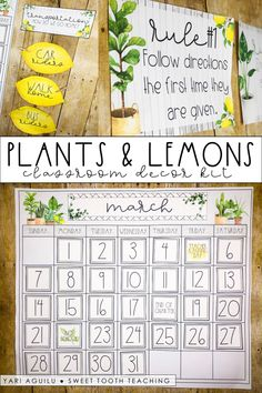 Plants & Lemon Theme Classroom Decor Kit Anyone other teacher out there a serious I am OBSESSED with house plants and everything LEMONS! Add some rustic accents to this classroom decor to create a total farmhouse class Classroom Decor Themes, Classroom Setup, Classroom Design, Kindergarten Classroom, Future Classroom, Classroom Organization, Classroom Board, Classroom Rules, Party Decoration