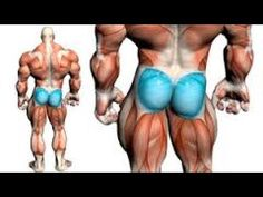 How To Tone Your Buttocks With 5 Glute Exercise's (Men) - Best 5 Butt Ex...