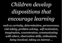 Bream Bay Kindergarten: Learning Dispositions
