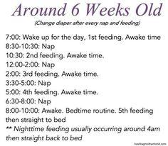 Birth to 6 Months Baby Schedule - Hashtag Motherhood. 6 weeks old schedule