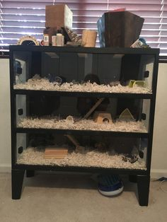 Page 812 of 816 - Proud of your hamsters cage - posted in Supplies & Accessories:   Pretty furniture conversion