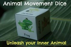 Wildlife Animal Movement Dice