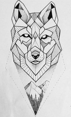 vlk ale s Gerlachem dole