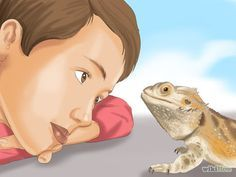 How to Build Love With Your Bearded Dragon: 12 Steps