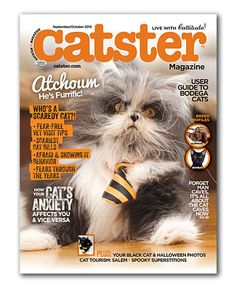 Loving this Catster Magazine Subscription on #zulily! #zulilyfinds