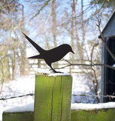 Garden Bird looking for the worm Metal Blackbird by jolyonyates, £20.00