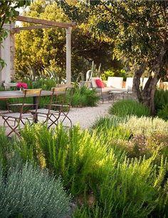 Croatian coastal garden  ..rh