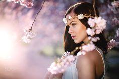 cherry blossom III - Rahel in a cherry blossom dream /evening light