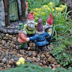 A tropical garden gnome is a special variation of the being used to decorate gardens or backyards. They vary a lot from the regular gnomes. Funny Garden Gnomes, Funny Gnomes, Garden Crafts, Garden Art, Garden Design, Love Garden, Lawn And Garden, Garden Statues, Garden Sculpture