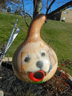 My first dog gourd birdhouse...