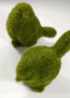 Moss Topiary Birds 5in (Set of 2) These would be really cute to include in the centerpieces :)