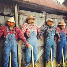 Pumpkin scarecrows fall decorating