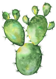 Cactus Watercolor Clipart Blossom Succulents Hand Painted