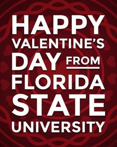 A NOLES Valentine. Garnet And Gold, Florida State University, Hush Hush, Holidays And Events, Happy Valentines Day, Birthday Wishes, Fans, Winter, Winter Time
