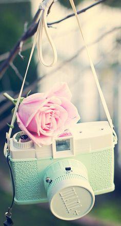 #lomography #vintage #rose #wallpaper