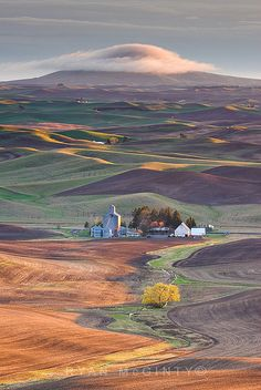 Palouse, Washington: Visit the Palouse Scenic Byway in southeastern Washington state, see the wonders of this area of the country. Places Around The World, Oh The Places You'll Go, Places To Travel, Places To Visit, Around The Worlds, Beautiful World, Beautiful Places, All Nature, Belle Photo