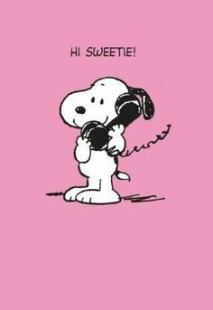 Snoopy - Hi Sweetie - Happy Valentine's Day! Peanuts Cartoon, Peanuts Snoopy, Snoopy Cartoon, Snoopy Pictures, Snoopy Quotes, Peanuts Quotes, Joe Cool, Bd Comics, Charlie Brown And Snoopy