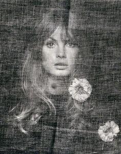 Jean Shrimpton, 1969. Photo: David Bailey.