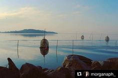 #Repost @morganaph_  b u o n a n o t t e Lago Trasimeno Umbria.  #umbria #sanfeliciano #volgoumbria #volgoitalia #viviumbria #lake #paceofsense #photo #photography #colours #canon #umbriagram #trasimenolake #instagram #instamoment #instapic #instaphoto #instacanon #instalake #followme #follow #like #yallersumbria #ig_umbria