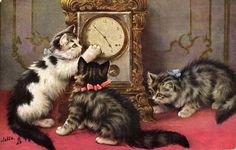 """""""How Does it Work"""" ~ Three cats playing with clock - Raphael Tuck vintage postcard, ca. 1900s."""