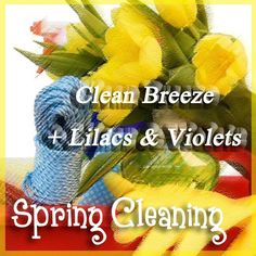 """~Spring Cleaning~ 1 Cube """"Clean Breeze"""" 1 Cube """"Lilacs & Violets"""" https://brandyhaselroth.scentsy.us/"""