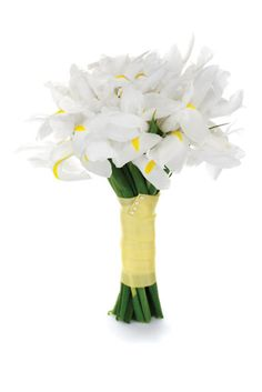 Just irsis.  I like them in all white and in all purple/Blue (JV) White iris bouquet