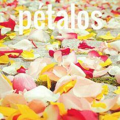 ptalos masc  petals Ej El suelo est lleno dehellip