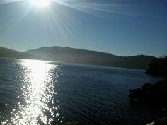 Best of Maple Bay!!