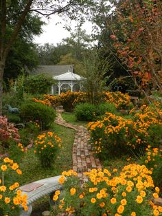 Pretty fall garden at Historic Calhoun House Perry, Florida