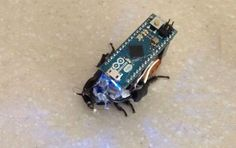 Warning: this DIY hack requires surgery. And an Arduino.