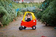 Merry Christmas by FrankGuido: Great shot! #Photography #Portrait #Kids