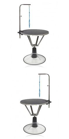 Grooming Tables 146241: Hydraulic Dog Grooming Lift Table Arm Professional Groom 35 Rotating Surface -> BUY IT NOW ONLY: $288.02 on eBay!