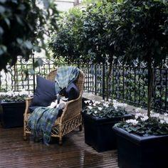 Zahrady Terasy inspirace, místo křesla #virivka:) Úplně jiný #relax:) www.softub-spa.cz